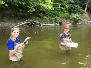Stream & Wetland Restoration Assessment
