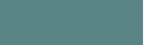 AES-logo-dteal