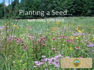 Planting a Seed Cover