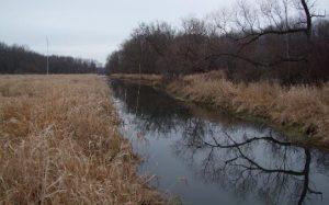 Beaver Creek Restoration Press Release_March 2021