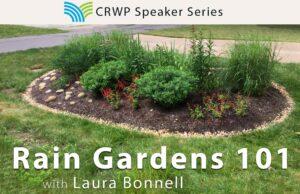 Laura – Rain Gardens_image