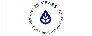 25th anniversary logo adjusted