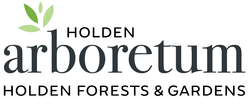 Holden 2017_official